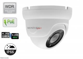 Monitorrs Security IP dome kamera 2,1 MPix Štandard (6001)